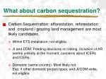 what about carbon sequestration