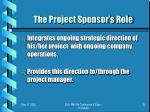 the project sponsor s role