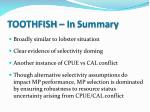 toothfish in summary