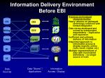 information delivery environment before ebi