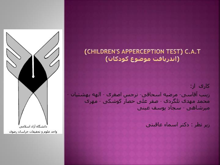 c a t children s apperception test n.