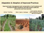 adaptation adoption of improved practices
