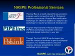 naspe professional services