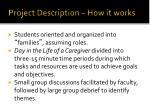 project description how it works