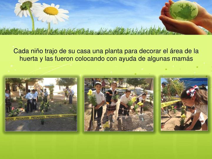 Cada niño trajo de su casa una planta para decorar el área de la huerta y las fueron colocando con ayuda de algunas mamás