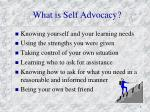 what is self advocacy