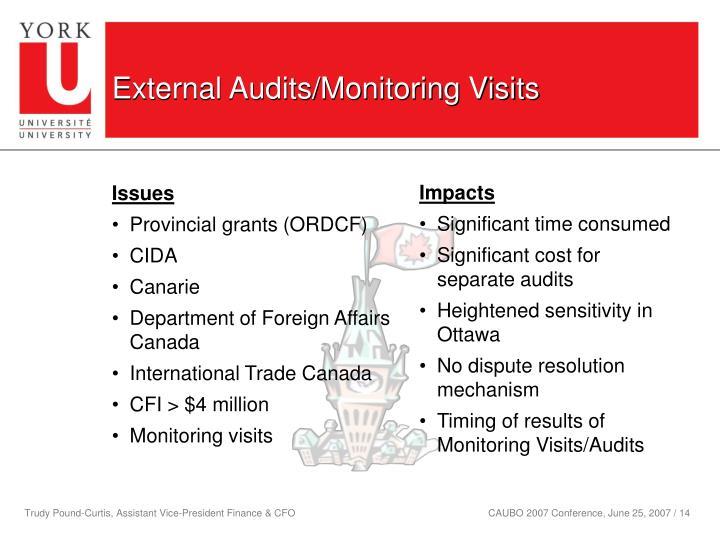 External Audits/Monitoring Visits