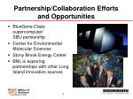 partnership collaboration efforts and opportunities