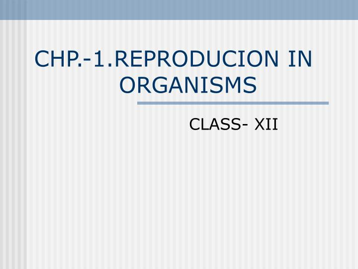 chp 1 reproducion in organisms n.