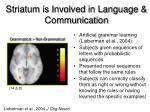 striatum is involved in language communication
