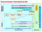 reas funcionales e interrelaci n de scm
