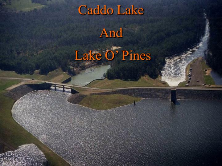 caddo lake and lake o pines n.
