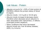 lab values protein