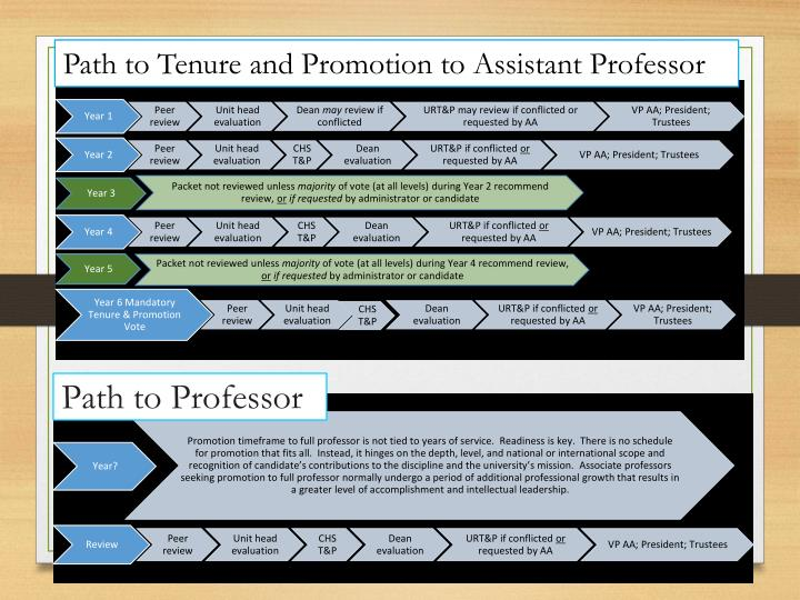 Path to Tenure and Promotion to Assistant Professor