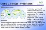 global c storage in vegetation