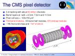 the cms pixel detector