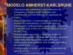 modelo amherst karlsruhe12