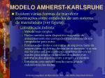 modelo amherst karlsruhe3