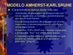 modelo amherst karlsruhe31