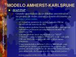 modelo amherst karlsruhe39