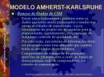 modelo amherst karlsruhe43