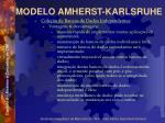 modelo amherst karlsruhe49