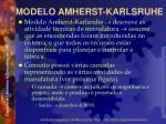 modelo amherst karlsruhe9