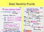 solar neutrino puzzle