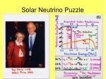 solar neutrino puzzle1