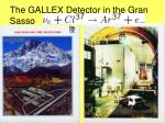 the gallex detector in the gran sasso