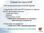outlook for micro chp