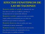 efectos fenotipicos de las mutaciones