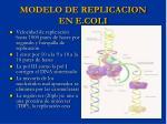 modelo de replicacion en e coli