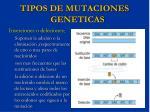 tipos de mutaciones geneticas