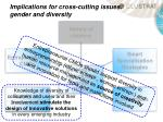 implications for cross cutting issues gender and diversity