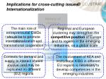 implications for cross cutting issues internationalization