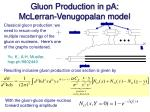 gluon production in pa mclerran venugopalan model1