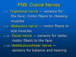 pns cranial nerves1