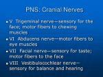 pns cranial nerves5