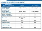 empire bcbs hdhp at a glance