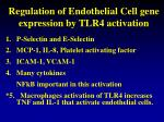 regulation of endothelial cell gene expression by tlr4 activation