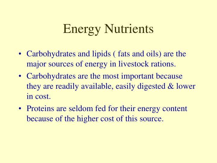 Energy Nutrients