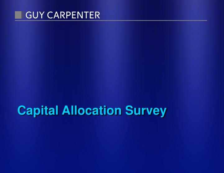 capital allocation survey n.