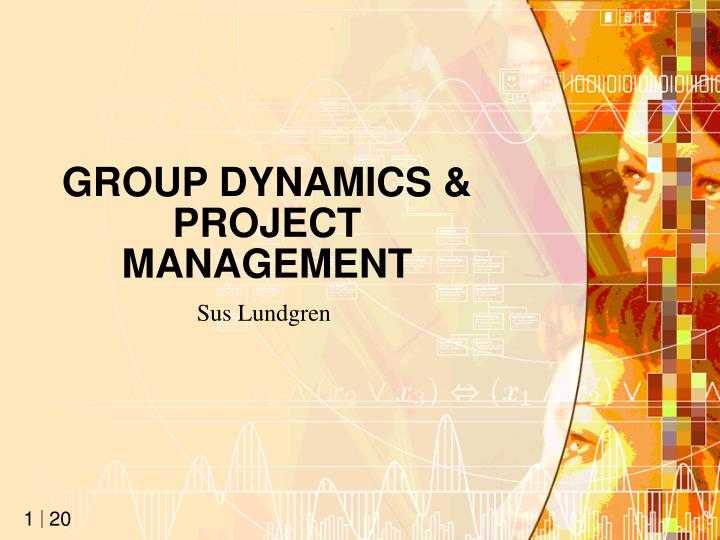 group dynamics project management n.