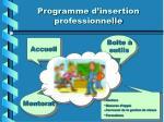programme d insertion professionnelle