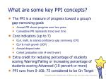 what are some key ppi concepts