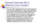 general comment no 3 minimum core content