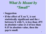 what is meant by small