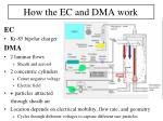 how the ec and dma work