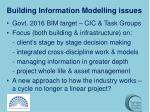 building information modelling issues